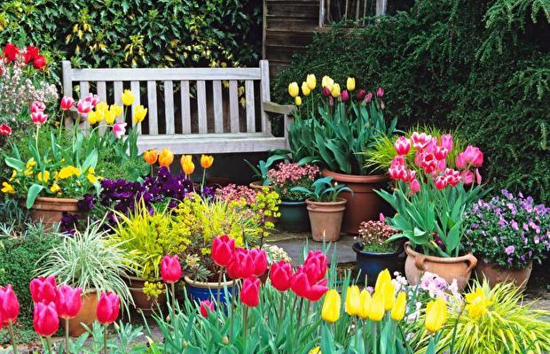 Bahçe düzenlemesi nedeniyle  10 öneri